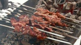 Vleespennen op de grill in de winter worden geroosterd die stock video