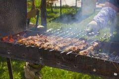 Vleespennen op vleespennen Stock Afbeelding