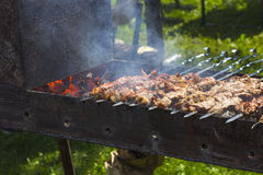 Vleespennen op vleespennen Royalty-vrije Stock Foto