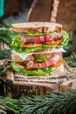 Vleessandwich voor ontbijt Stock Afbeelding