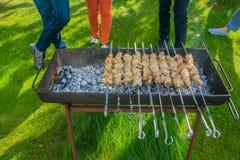 Vleesvleespennen bij de grill Openlucht koken Barbecue in de tuin royalty-vrije stock foto