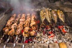Vleesvleespennen en vissen op de barbecuesteenkolen Royalty-vrije Stock Afbeeldingen