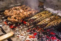 Vleesvleespennen en vissen op de barbecuesteenkolen Royalty-vrije Stock Foto's