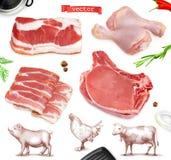 Vleesvoedsel Rundvlees, varkensvlees, kippenbenen 3d vector realistische reeks vector illustratie