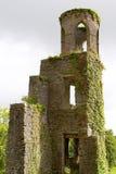 Vlei de Ruïnes van het Kasteel Royalty-vrije Stock Afbeelding