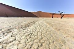 Vlei inoperante, Namíbia Fotografia de Stock Royalty Free