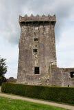 Vlei Kasteel in Ierland Stock Foto