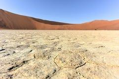 Vlei mort, Namibie Photographie stock