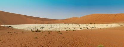 Vlei morto nel deserto di namib Fotografia Stock