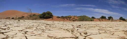 Vlei muerto Namibia Foto de archivo