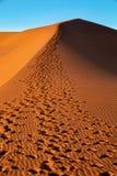 Vlei nascosto bello paesaggio in Namibia, Africa fotografia stock libera da diritti