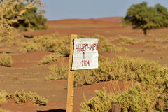 Vlei nascosto, Namibia immagini stock libere da diritti
