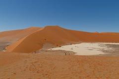 Vlei ocultado Desierto namibiano imagen de archivo libre de regalías