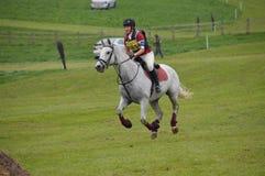 Vlek Grijs paard die dwarsland doen Stock Fotografie