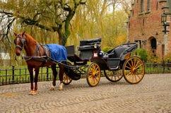 Vlekkeloos paard en vervoer Brugge België stock afbeeldingen