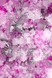 Vlekken van het schilderen conformig beeld van oude purpecolor Stock Foto's