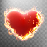 Vlentine s day concept. Heart in flame. EPS 10. Valentine s day concept. Heart in flame on transparent background. EPS 10 vector file included Royalty Free Stock Images