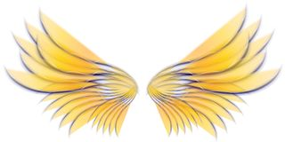 Vleugels 3 van de Vogel of van de Fee van de engel Royalty-vrije Stock Fotografie