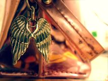 vleugels Stock Fotografie