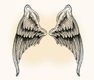 Vleugels - Getrokken Hand Stock Afbeelding