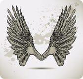 Vleugels van een kraai. Vector illustratie. Royalty-vrije Stock Afbeeldingen