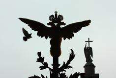 Vleugels van Heilige Petersburg Rusland Stock Afbeeldingen