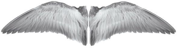 vleugels van vogel stock illustratie