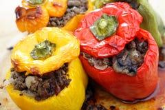 Välfyllda peppar från ugnen Arkivfoto