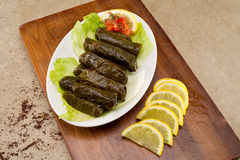 Välfyllda vinrankasidor, libanesisk kokkonst Arkivbild