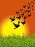 Vlieg 01 van vogels Royalty-vrije Stock Afbeeldingen