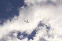 Vlieg Stock Afbeeldingen