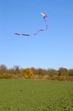 Vlieg een vlieger royalty-vrije stock afbeelding