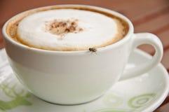 Vlieg op een koffiekop Stock Afbeelding