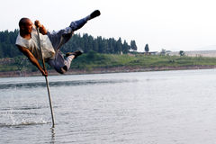 Vlieg op water. Stock Foto's