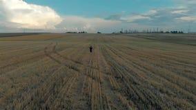 Vlieg over de lopende mens bij gebied met grote slagtanden bij zonsondergang stock videobeelden