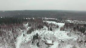 Vlieg over het de winter boslandschap in bewolkt weer met een sneeuwval stock footage
