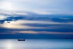 Vlieg - vissen-Calo Royalty-vrije Stock Afbeeldingen