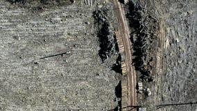 Vliegend boven afschuwelijke ontbossing, milieuvernietiging na orkaan stock footage