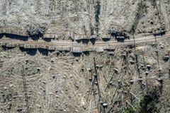 Vliegend boven afschuwelijke ontbossing, registreren, milieuvernietiging stock foto