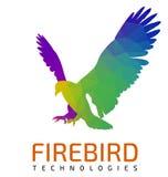 Vliegend Eagle Logo Template Stock Fotografie