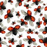 Vliegend lieveheersbeestje naadloos patroon Stock Afbeeldingen