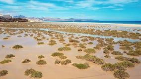 Vliegend over Costa Calma-strand, Fuerteventura, Canarische Eilanden stock videobeelden