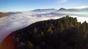 Vliegend over een berg met sparren, die een overzees van wolken ontdekken Het zonlicht komt uit het oosten bij het recht van het  stock video