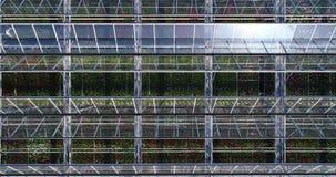 Vliegend over een grote serre met bloemen, een serre met een intrekbaar hierboven dak, een serremening van, het groeien stock footage