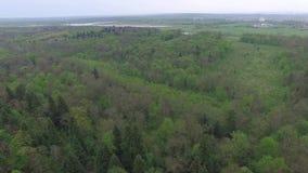 Vliegend over groen vergankelijk bos met kleine open plekken, luchtmening stock videobeelden