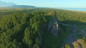 Vliegend over mooie zonnige bosbomen op de berg Luchtcameraschot Landschapspanorama stock footage