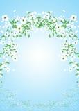 Vliegende bloemen Royalty-vrije Stock Foto's