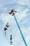 Vliegende Dansers in Tulum Mexico Royalty-vrije Stock Foto