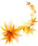 Vliegende de herfstbladeren royalty-vrije illustratie
