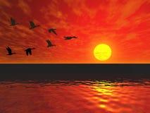 Vliegende eenden Royalty-vrije Stock Foto's